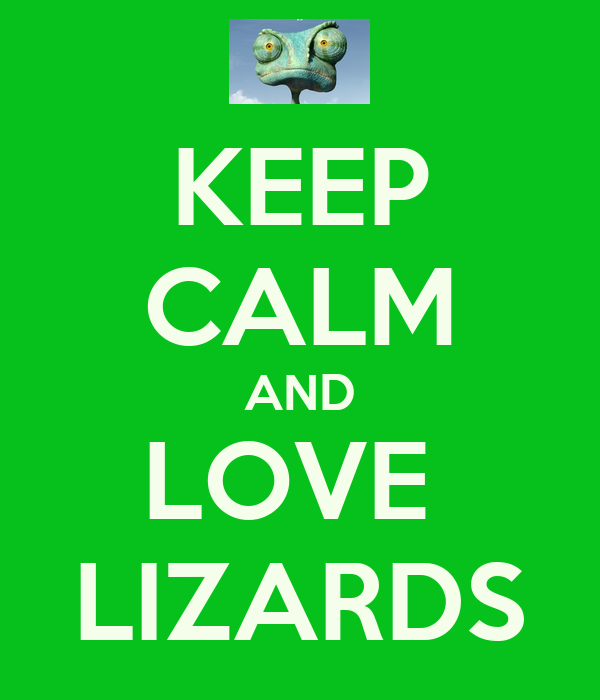 KEEP CALM AND LOVE  LIZARDS