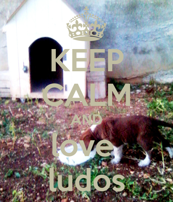KEEP CALM AND love  ludos