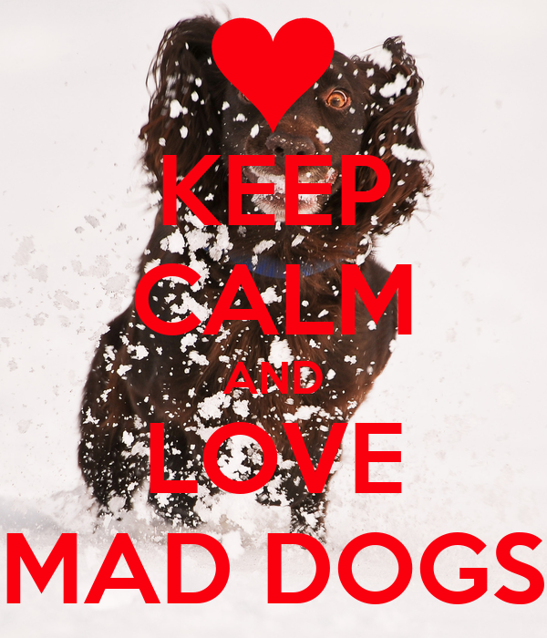 KEEP CALM AND LOVE MAD DOGS
