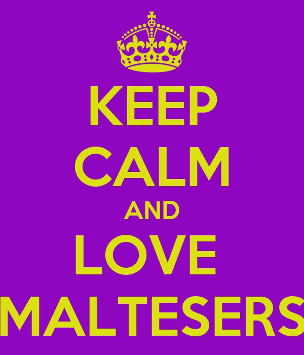 KEEP CALM AND LOVE  MALTESERS