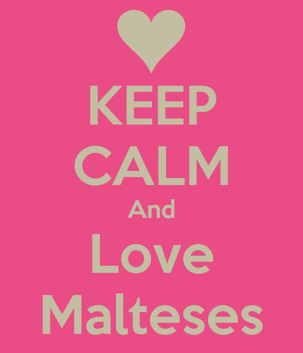 KEEP CALM And Love Malteses