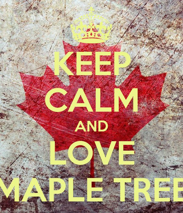 KEEP CALM AND LOVE MAPLE TREE