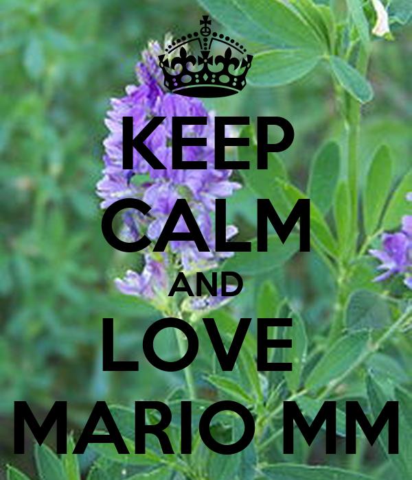 KEEP CALM AND LOVE  MARIO MM