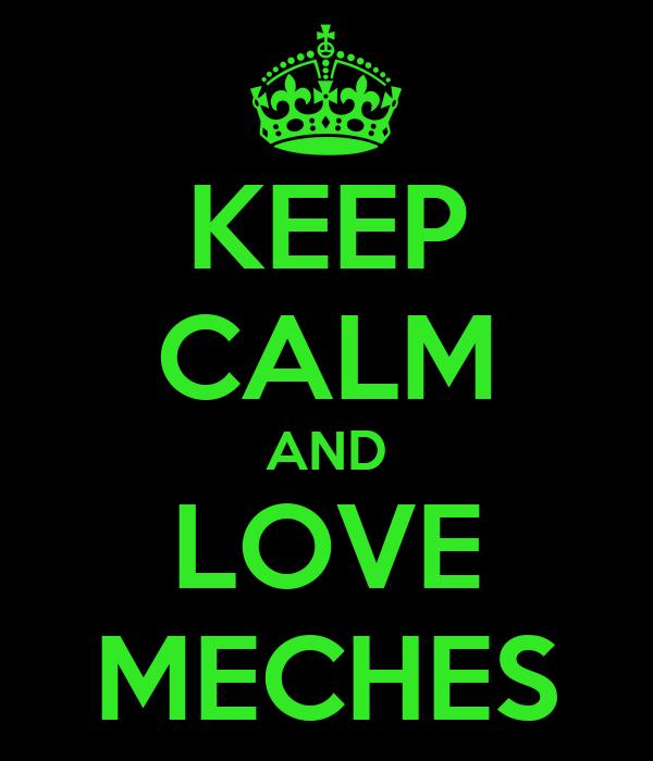KEEP CALM AND LOVE MECHES
