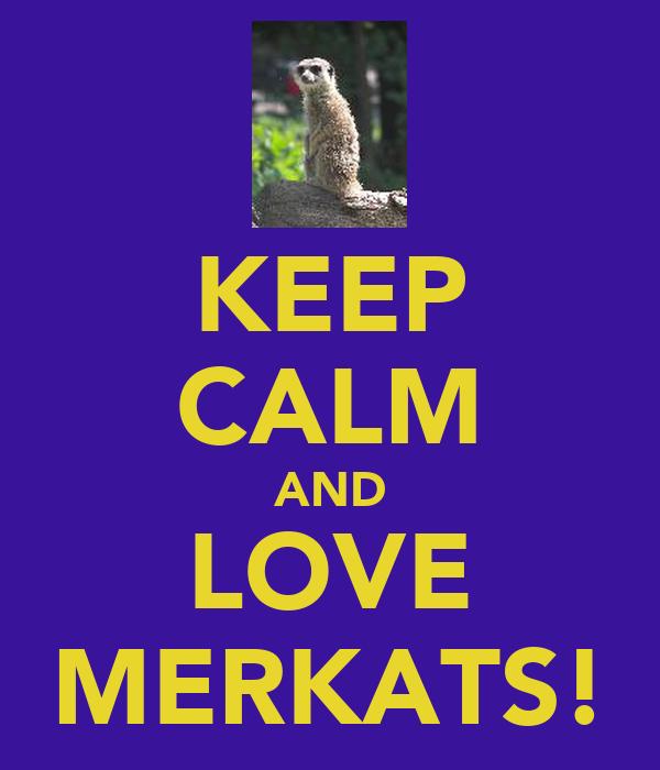 KEEP CALM AND LOVE MERKATS!