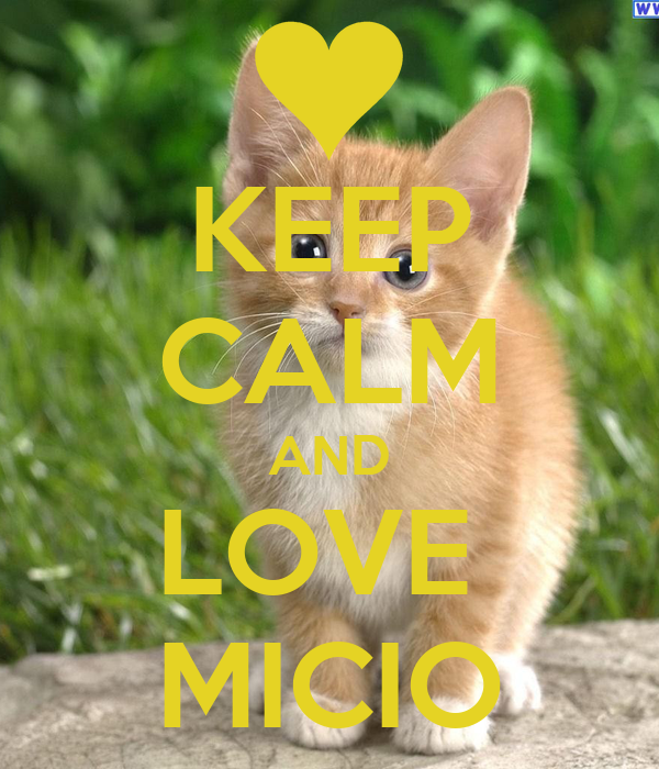 KEEP CALM AND LOVE  MICIO