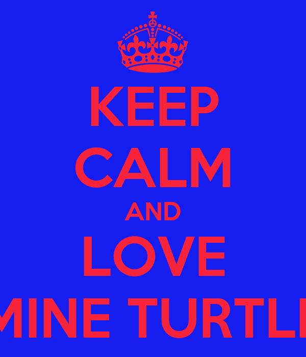 KEEP CALM AND LOVE MINE TURTLE