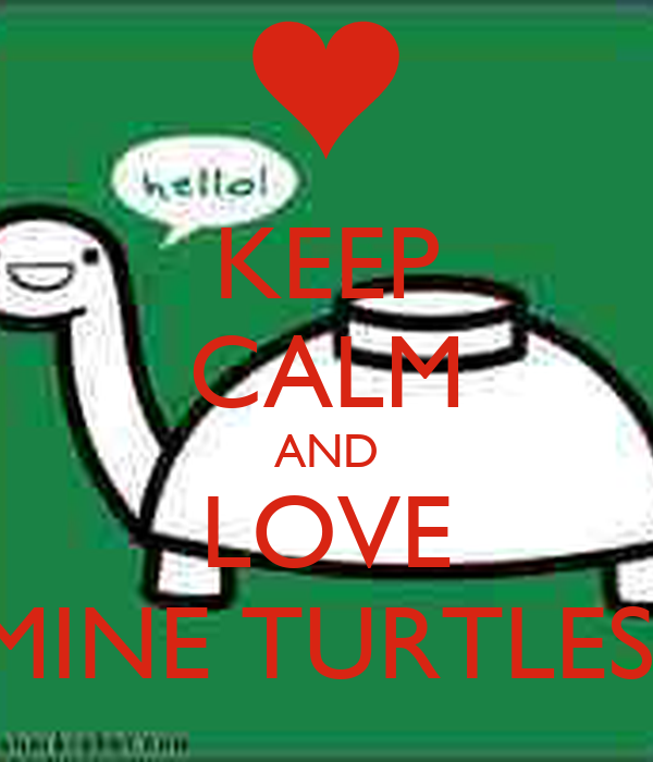 KEEP CALM AND LOVE MINE TURTLES