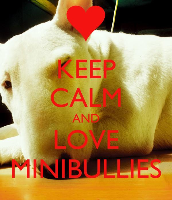 KEEP CALM AND LOVE MINIBULLIES