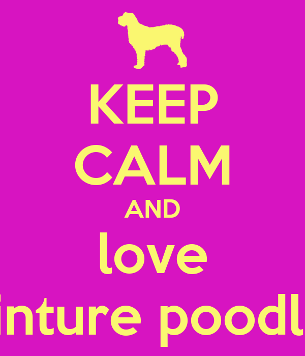 KEEP CALM AND love minture poodles