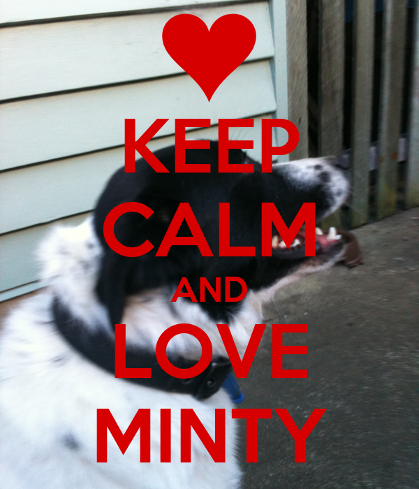 KEEP CALM AND LOVE MINTY