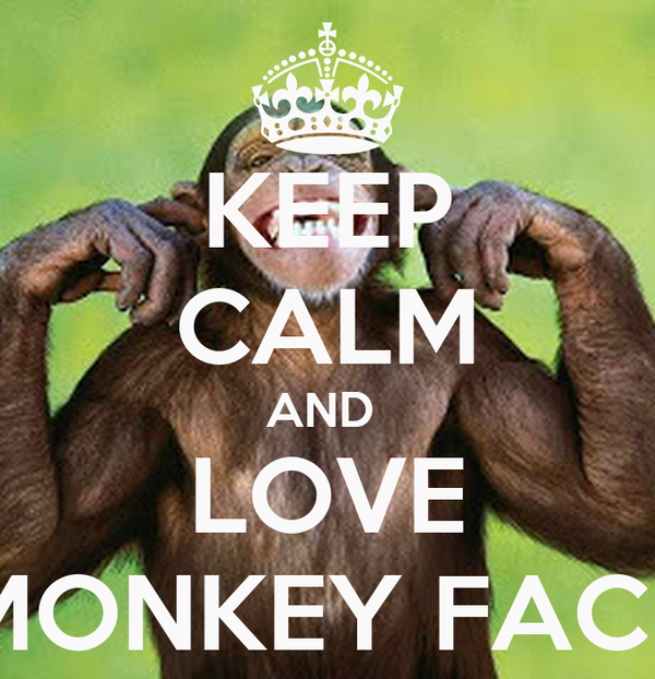 KEEP CALM AND  LOVE MONKEY FACE