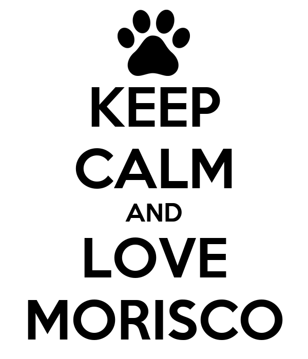 KEEP CALM AND LOVE MORISCO
