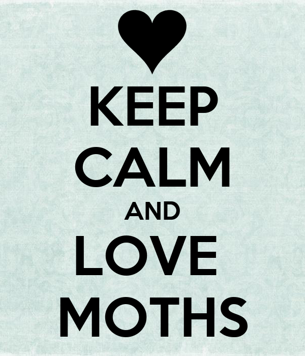 KEEP CALM AND LOVE  MOTHS