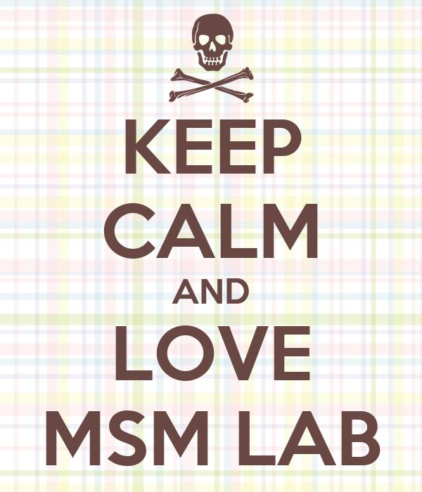 KEEP CALM AND LOVE MSM LAB