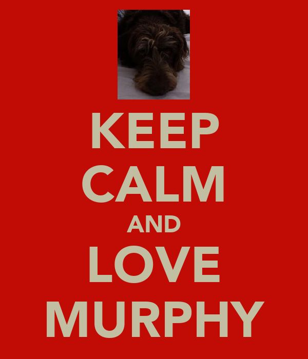 KEEP CALM AND LOVE MURPHY