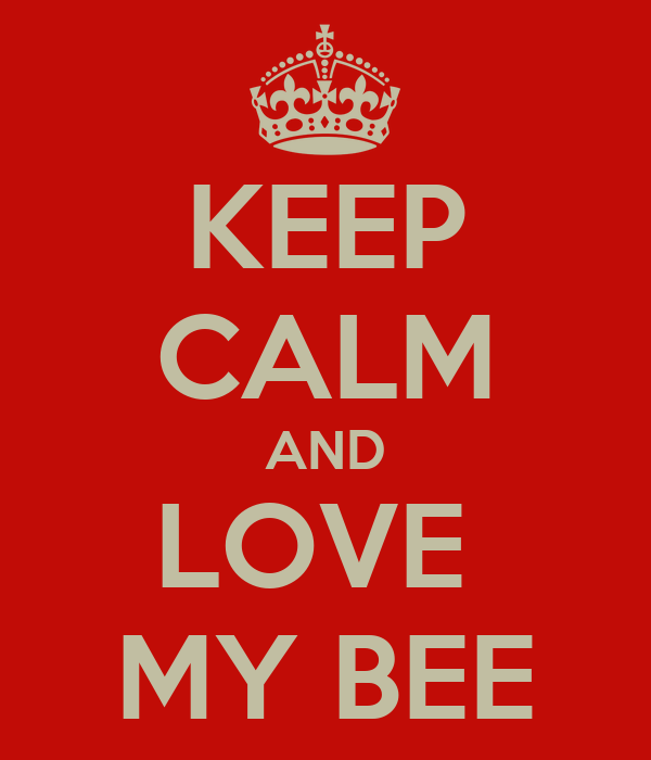 KEEP CALM AND LOVE  MY BEE