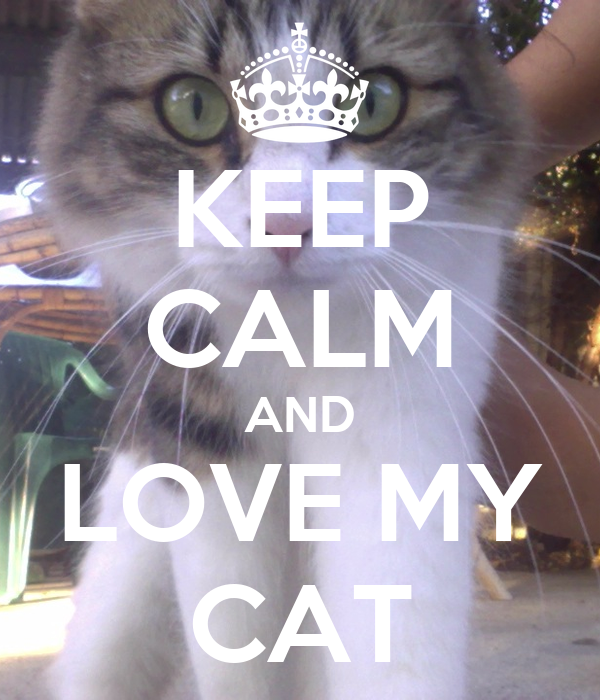 KEEP CALM AND LOVE MY CAT