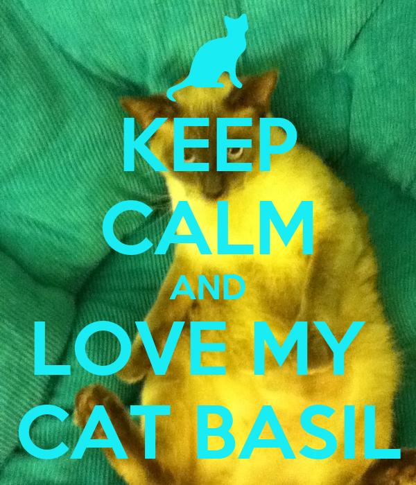 KEEP CALM AND LOVE MY  CAT BASIL