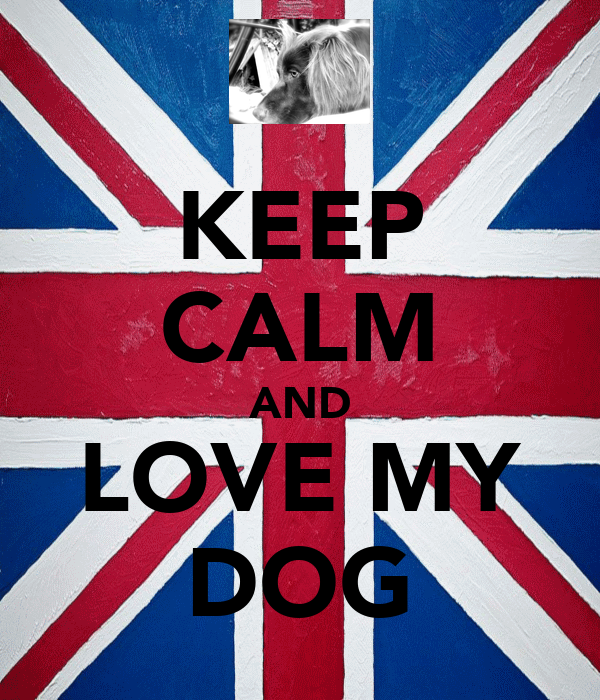 KEEP CALM AND LOVE MY DOG