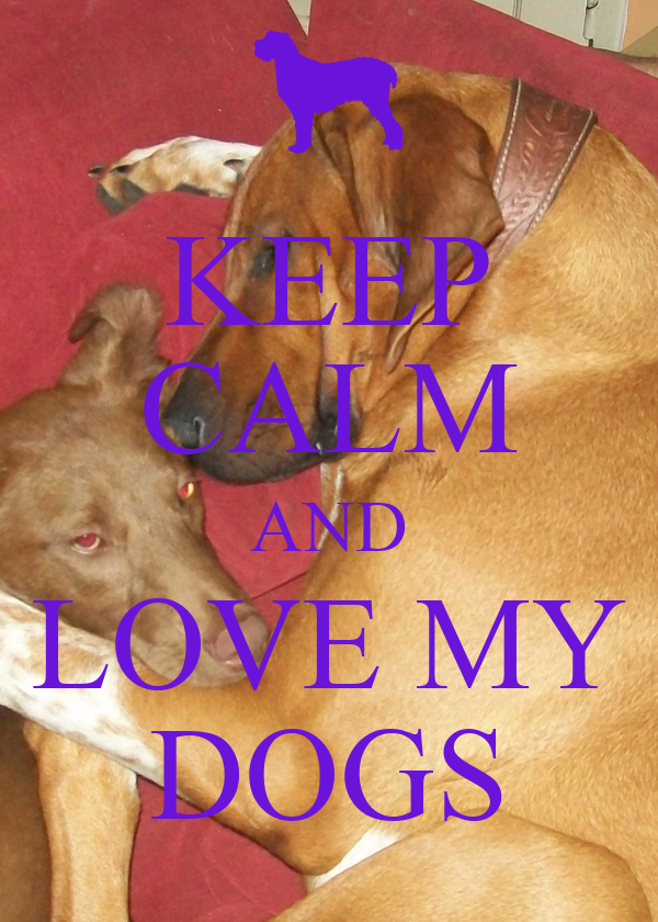 KEEP CALM AND LOVE MY DOGS