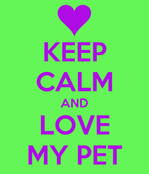 KEEP CALM AND LOVE MY PET