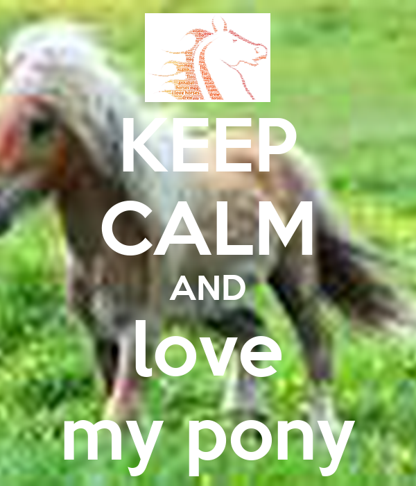 KEEP CALM AND love my pony