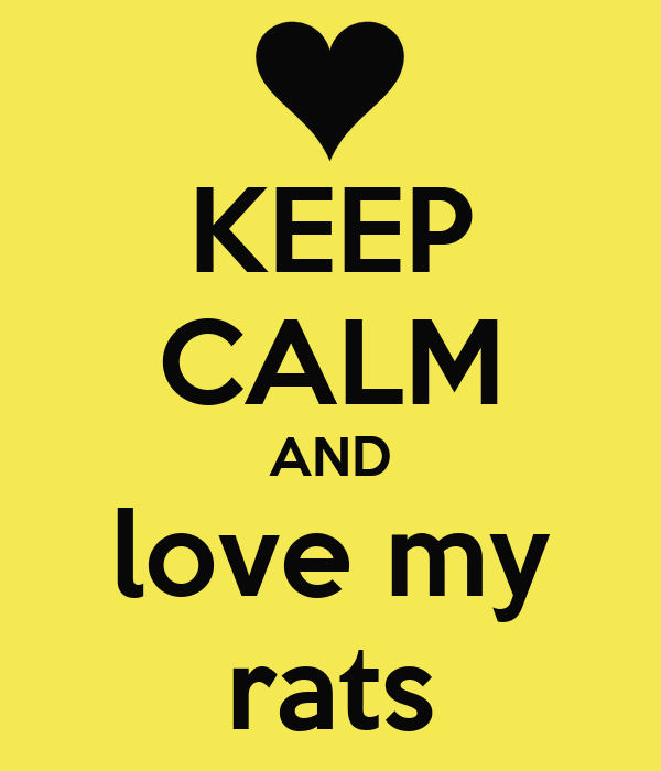 KEEP CALM AND love my rats