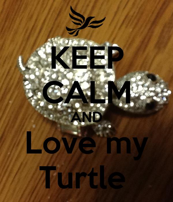 KEEP CALM AND Love my Turtle
