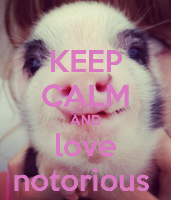 KEEP CALM AND love notorious