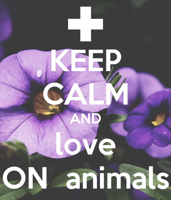 KEEP CALM AND love ON  animals