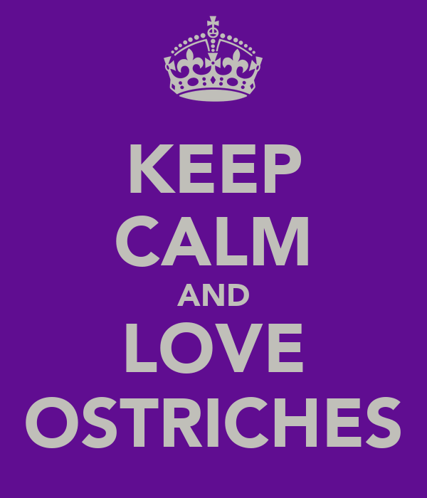 KEEP CALM AND LOVE OSTRICHES