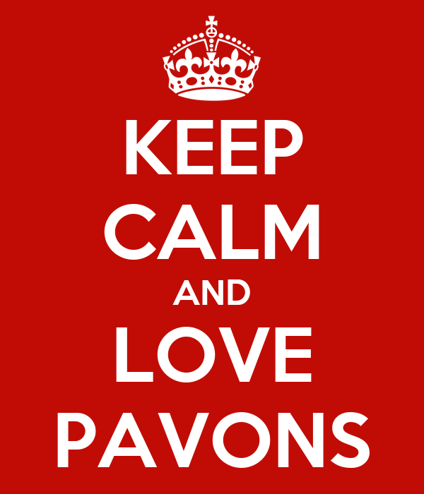 KEEP CALM AND LOVE PAVONS