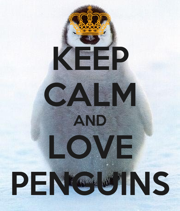 keep calm and love penguins poster lilly keep calmomatic