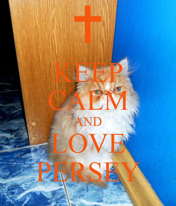 KEEP CALM AND LOVE PERSEY