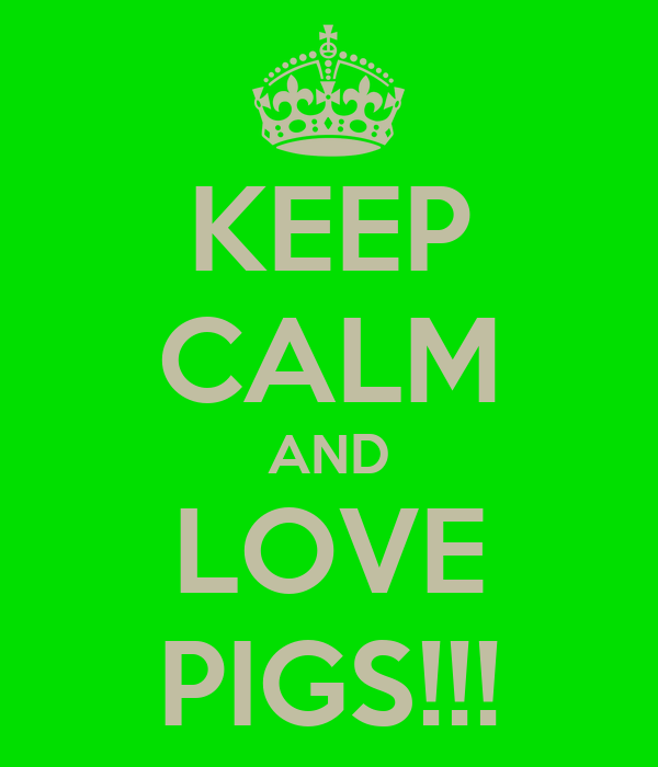 KEEP CALM AND LOVE PIGS!!!