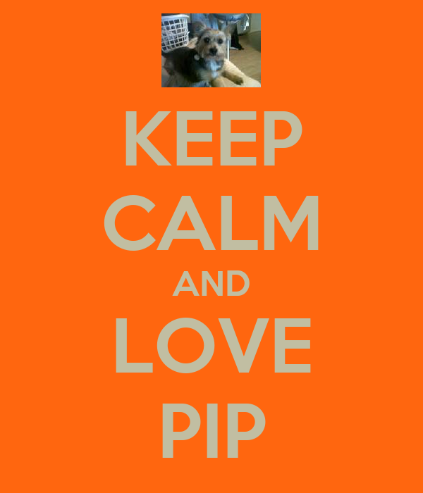 KEEP CALM AND LOVE PIP