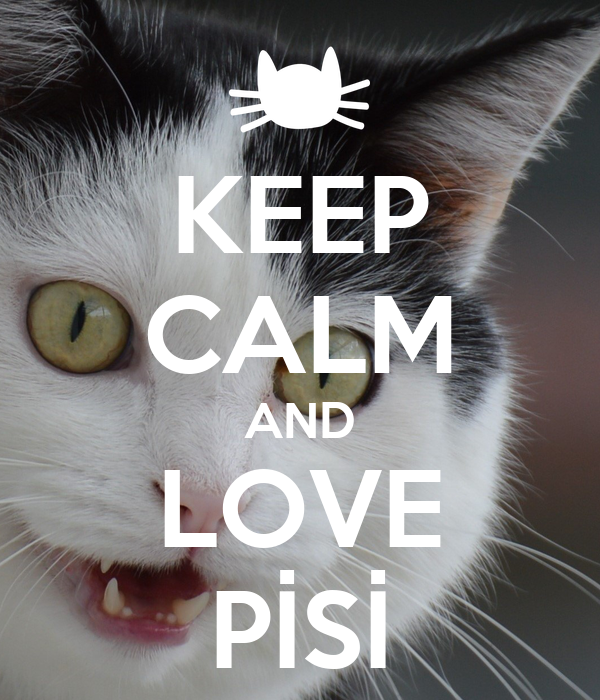 KEEP CALM AND LOVE PİSİ