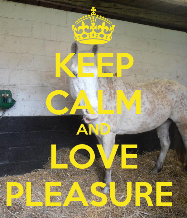 KEEP CALM AND LOVE PLEASURE