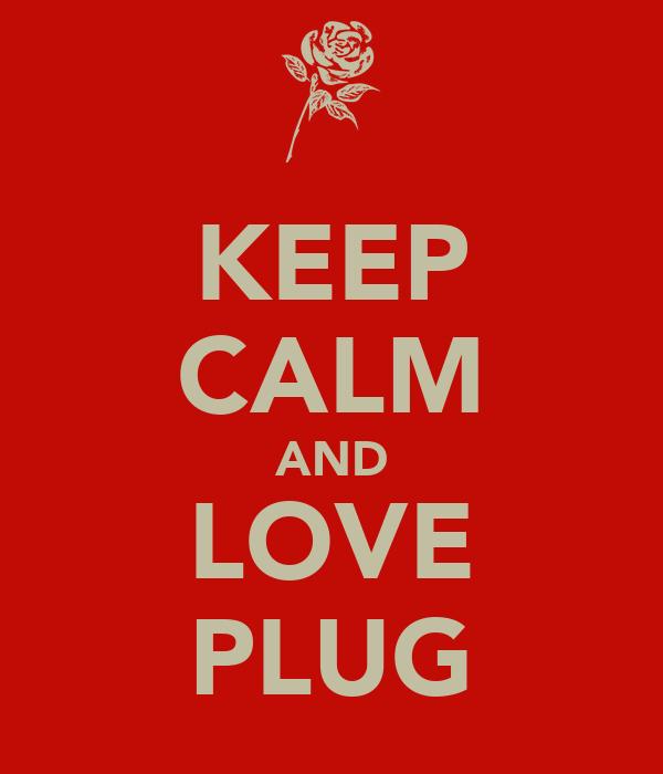 KEEP CALM AND LOVE PLUG