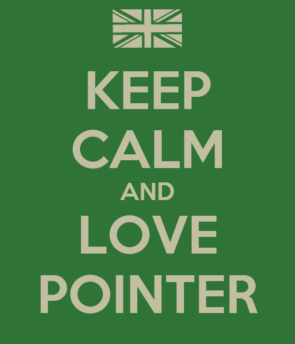 KEEP CALM AND LOVE POINTER