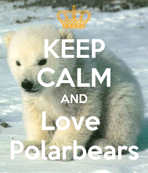 KEEP CALM AND Love  Polarbears