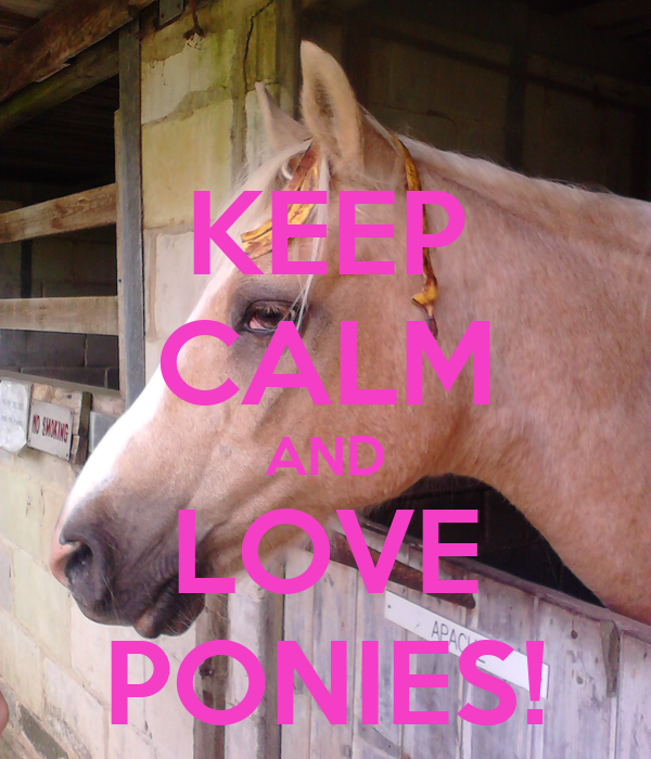 KEEP CALM AND LOVE PONIES!