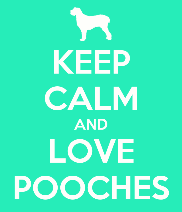 KEEP CALM AND LOVE POOCHES