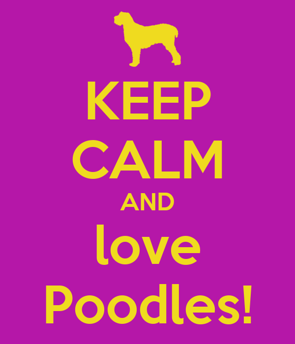 KEEP CALM AND love Poodles!