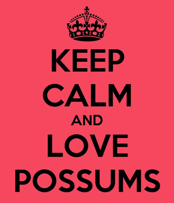 KEEP CALM AND LOVE POSSUMS