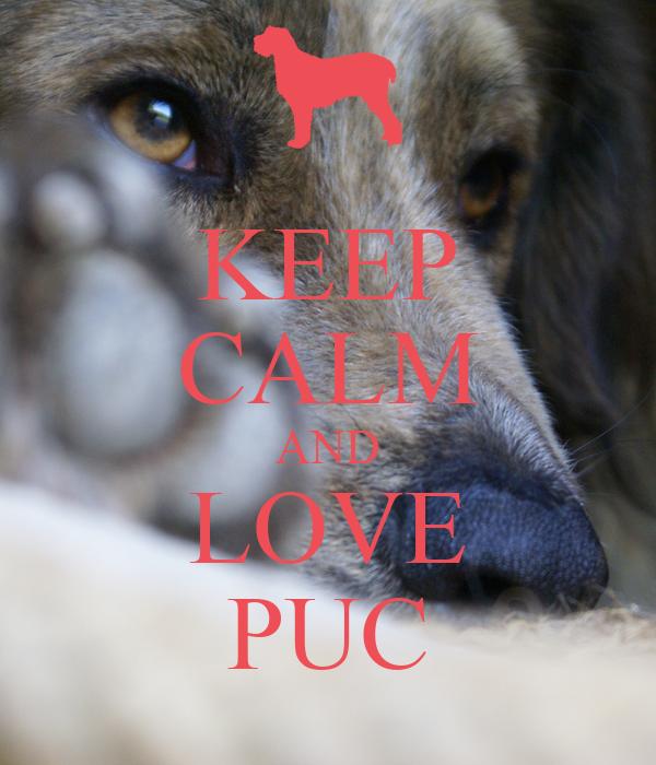 KEEP CALM AND LOVE PUC