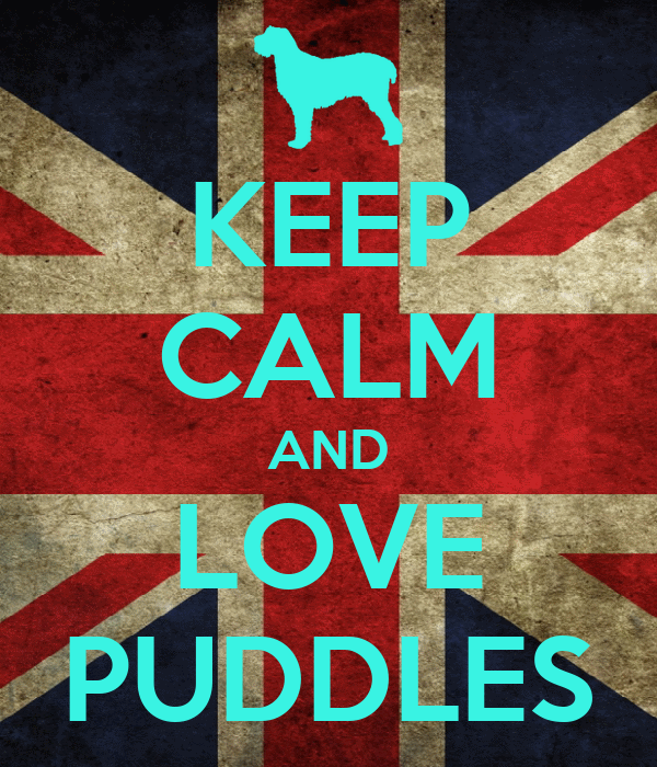 KEEP CALM AND LOVE PUDDLES