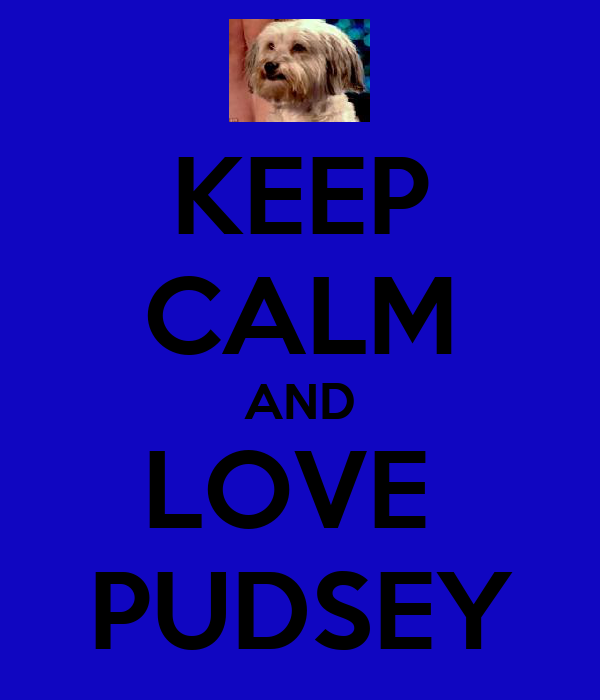 KEEP CALM AND LOVE  PUDSEY