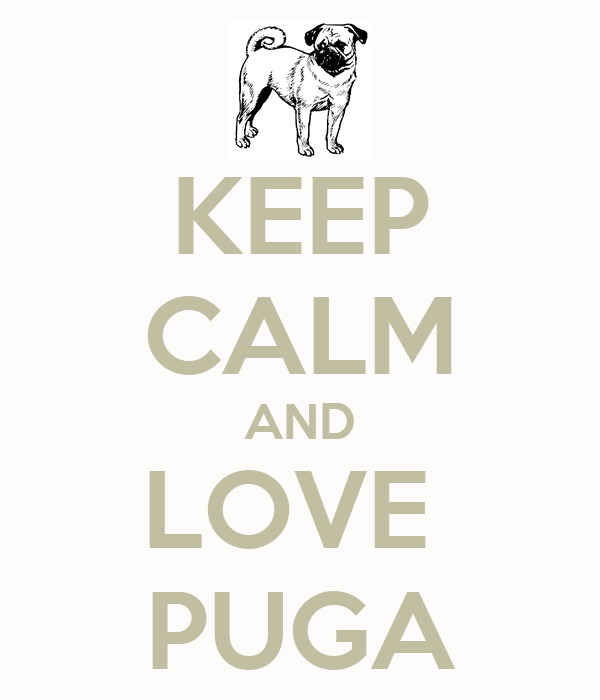 KEEP CALM AND LOVE  PUGA